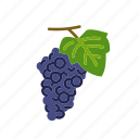 fruit, grape, grape vine, grapes, organic, wine icon