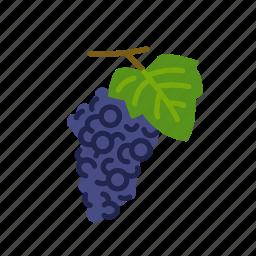fruit, grape, grape vine, grapes, organic, wine icon