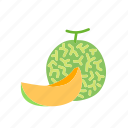 food, fruit, melon, organic, rockmelon, slice icon