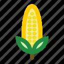 corn, fruits, popcorn, yellow icon