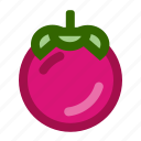 fruits, mangosteen, mangosteenfruit, sweet, violet icon