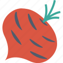 beetroot, cooking, food, healthy, kitchen, restaurant, vegetable icon