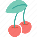 cherry, cooking, eating, food, fruit, kitchen, restaurant icon