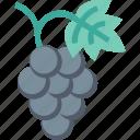 grape, restaurant, fruit, food, cooking, vine, kitchen