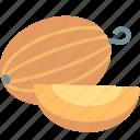 melon, cooking, food, fruit, kitchen, restaurant, sweet