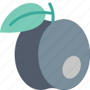 plum, cooking, food, fruit, gastronomy, kitchen, restaurant