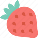 berry, cooking, food, gastronomy, kitchen, restaurant, strawberry icon