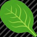 green, leaf, spanich, spinach, vegan, vegetable, vegetarian icon