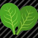 green, leaf, leaves, spinach, vegan, vegetable, vegetarian icon