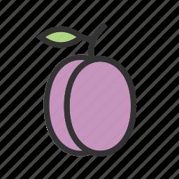 food, fresh, fruit, plum, plums, purple icon