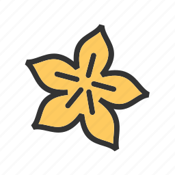 carambola, fresh, fruit, green, star, starfruit, yellow icon