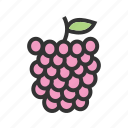 food, fresh, fruit, organic, peach, raspberry, sweet icon