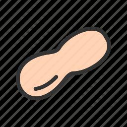 brown, food, healthy, peanut, peanuts, seed icon