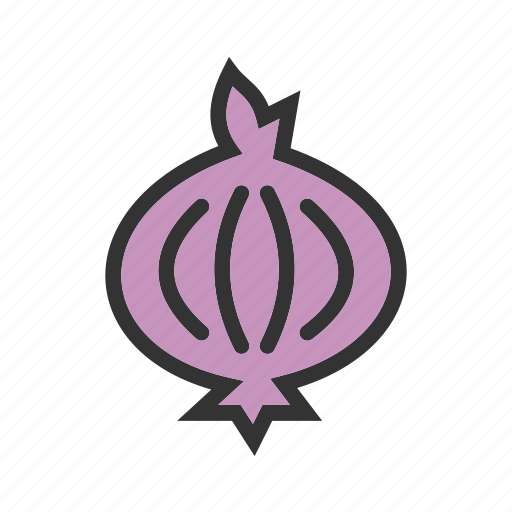 food, ingredient, onion, organic, purple, red, vegetable icon