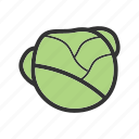 food, fresh, green, healthy, leaf, lettuce, salad icon