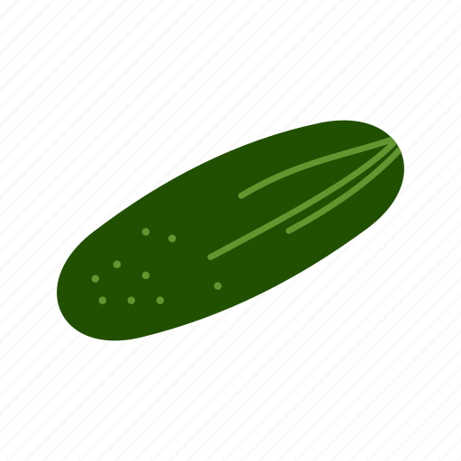 cucumber, food, fresh, green, healthy, vegetable icon