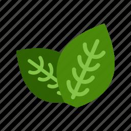 fresh, green, ingredient, leaf, mint, peppermint, spearmint icon