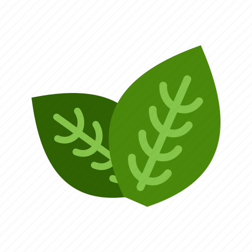 fresh, green, ingredient, leaf, mint, peppermint, spearmint icon