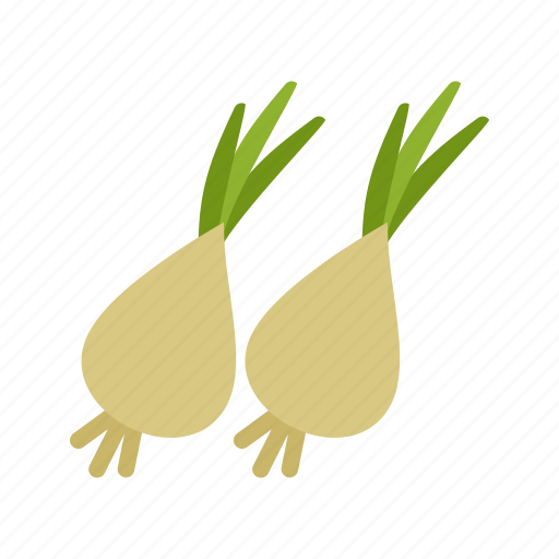 fresh, green, healthy, nutrition, onion, onions, spring icon