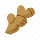 brown, food, fresh, ginger, ingredient, organic icon