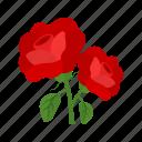 bouquet, death, flowers, grave, petals, roses