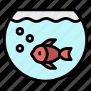 aquarium, bowl, fish, goldfish, pet