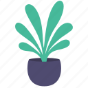 decor, home, leaves, plant, tree icon