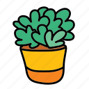 plant, house, pot, indoor, home, furniture icon