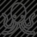octopus, animal, underwater, ocean, wild, palpus, tentacle