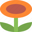 floral, flower, nature, plant, spring icon