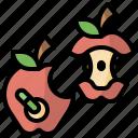 fruit, bite, health, bio, ecology, food, apple icon