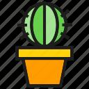 cactus, garden, plant, pot icon
