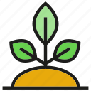 growth, leaf, plant, seed icon