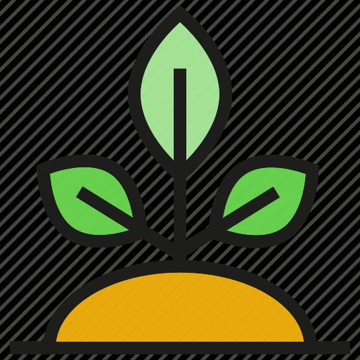growth, leaf, plant, seed icon