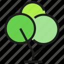 environment, nature, plant, tree icon