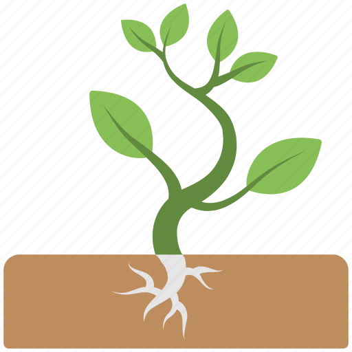 baby plant, mini plant, miniature, roots, soil icon