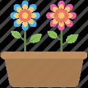 colored flowers, flower pot, multicolor, plants, pot icon
