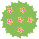 beautiful garden, flat icon, flowers, garden, garden flower icon