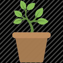 baby plant, flower pot, plant pot, planting, pot icon