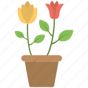 brown pot, flower pot, multi color, pot icon