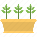 brown pot, green plant, plant, planting, pot icon