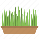 grass, green grass, planting, plants, pot icon
