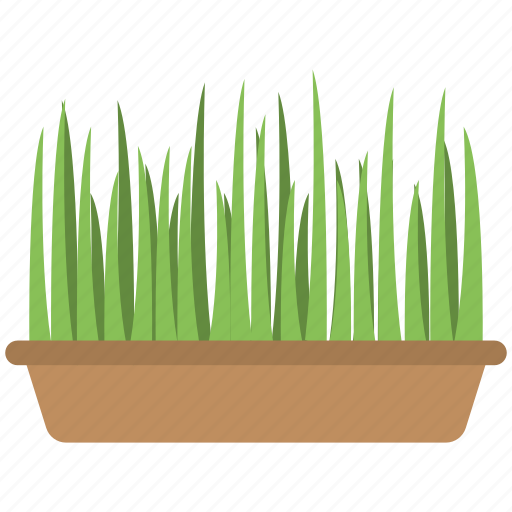 grass, green grass, planting, plants, pot icon