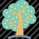 tree, fruit, nature, oak, apple, green, garden icon