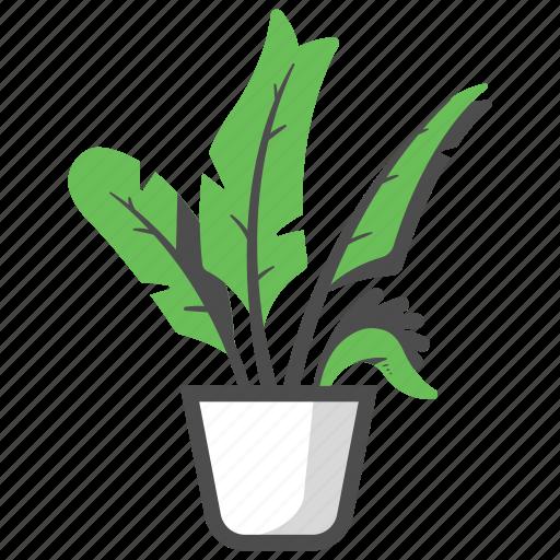Bird, bird of paradise plant, decoration, garden, nature, paradise, plant icon - Download on Iconfinder