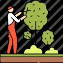 tree, trimming, pruning, man, gardener, professional