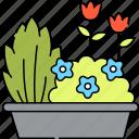 garden, gardening, flower, bed, plot, grown, potted