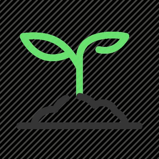 garden, gardening, green, leaf, nature, plant, tree icon