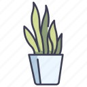 garden, pot, gardening, potted, sanke, plants, fern icon