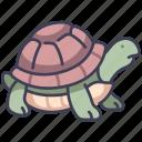 animal, garden, pet, reptile, turtle, wildlife icon